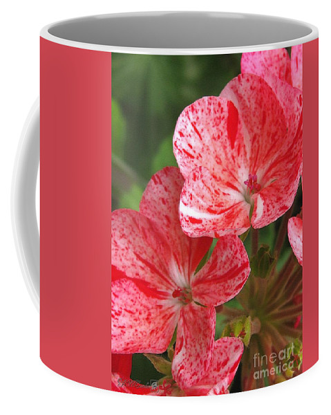 Zonal Geranium Coffee Mug featuring the painting Zonal Geranium Named Mosaic Red by J McCombie