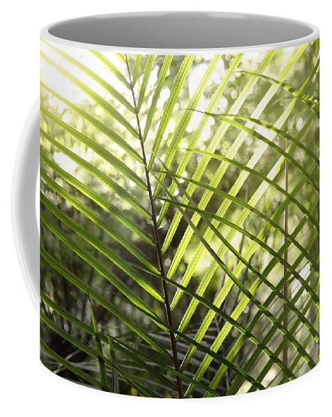 Outdoor Coffee Mug featuring the photograph Leaves by Les Cunliffe