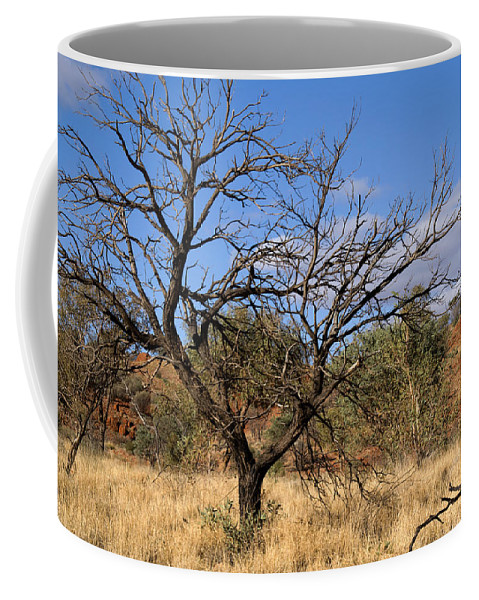 The Olgas Coffee Mug featuring the digital art The Olgas by Carol Ailles