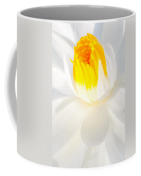 Flowers Coffee Mug featuring the photograph Water Lily by Dennis Goodman