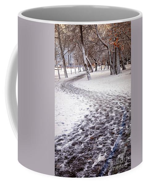 Winter Coffee Mug featuring the photograph Winter Park by Elena Elisseeva