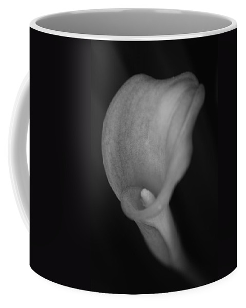 Calla Coffee Mug featuring the photograph Calla Lily by Paulo Goncalves