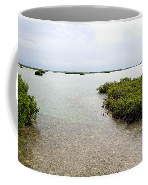 Atlantic Ocean Coffee Mug featuring the digital art Scenes From Key West by Carol Ailles