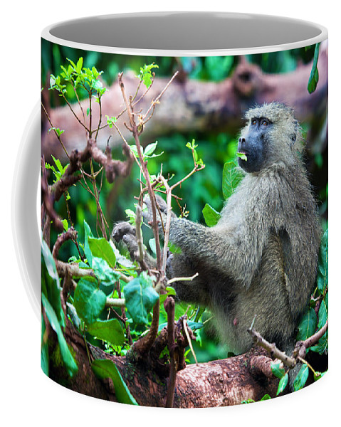 Baboon Coffee Mug featuring the photograph A Baboon In African Bush by Michal Bednarek