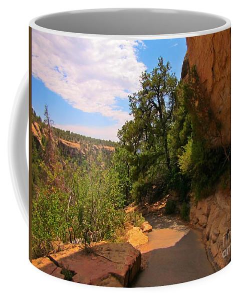 A Beautiful Walk Coffee Mug featuring the photograph A Beautiful Walk by John Malone