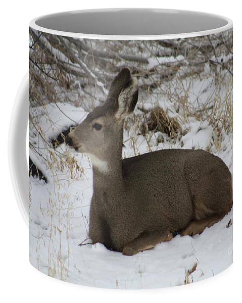 Deer Coffee Mug featuring the photograph A Bed Of Snow by Brandi Maher