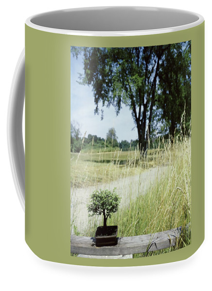 Plants Coffee Mug featuring the photograph A Bonsai Tree In A Hayfield by Pedro E. Guerrero
