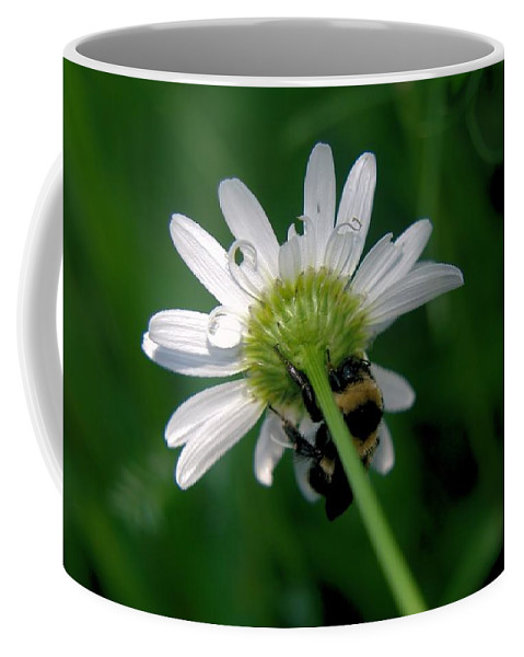 Insects Coffee Mug featuring the photograph A Bumble On The Wrong Side by Jeff Swan