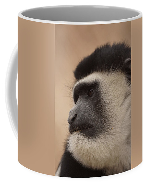 Colobus Monkey Coffee Mug featuring the photograph A Colobus Monkey by Ernie Echols