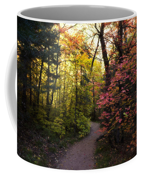 Fall Colors Coffee Mug featuring the photograph A Colorful Path by Saija Lehtonen