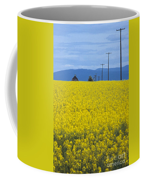 Canola Coffee Mug featuring the photograph A Country Mile by Sharon Elliott