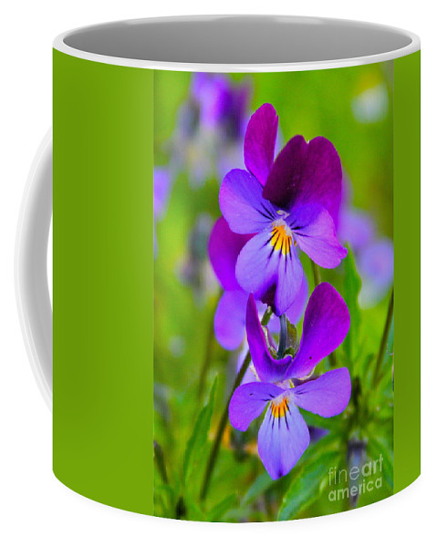 Flower Coffee Mug featuring the photograph A Couple Of Pansies by Rick Monyahan