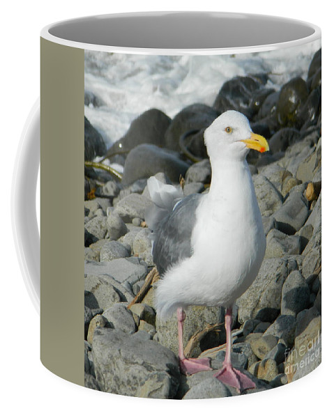 A Curious Seagull Coffee Mug featuring the photograph A Curious Seagull by Chalet Roome-Rigdon