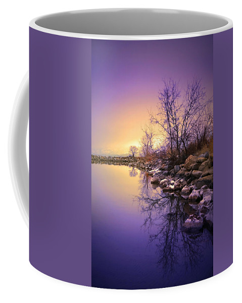 Winter Coffee Mug featuring the photograph A Distant Glow by Tara Turner