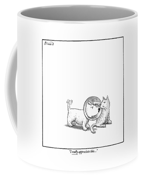 A Dog With A Neck Cone Is Having His Head Coffee Mug