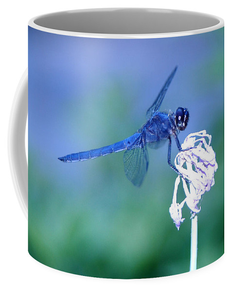 A Dragonfly Coffee Mug featuring the photograph A Dragonfly V by Raymond Salani III
