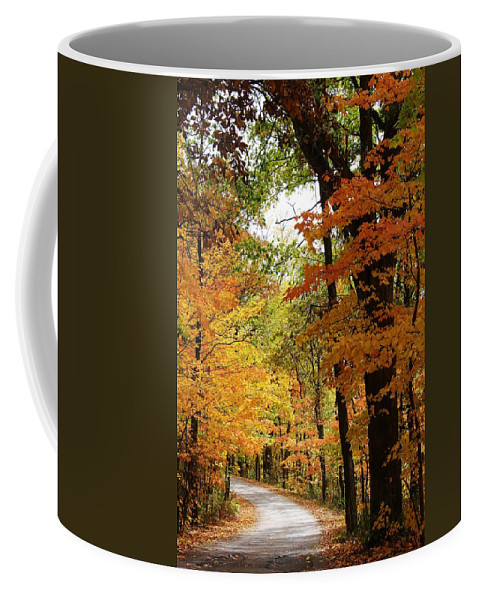 Woodland Coffee Mug featuring the photograph A Drive Through The Woods by Bruce Bley