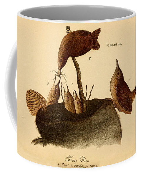 Family Coffee Mug featuring the painting A Family Of House Wrens by Philip Ralley
