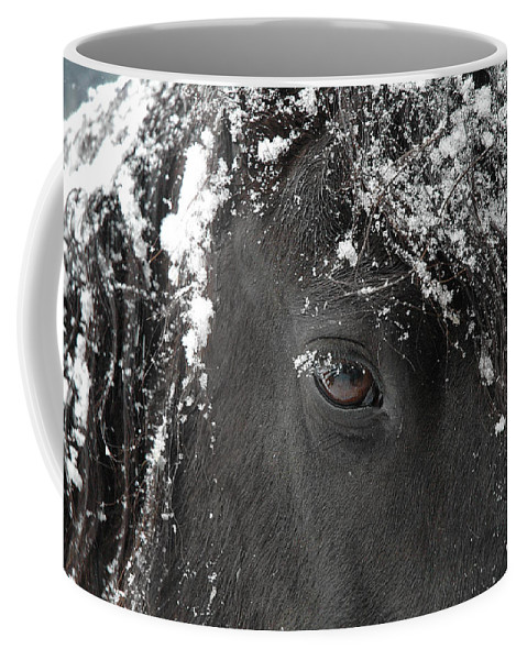 Horses Coffee Mug featuring the photograph A Few Of My Favorite Things by Fran J Scott