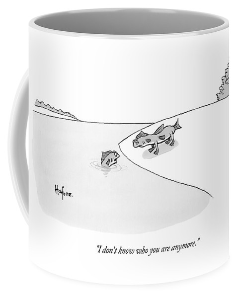 A Fish In Water Talks To Another Fish Which Coffee Mug