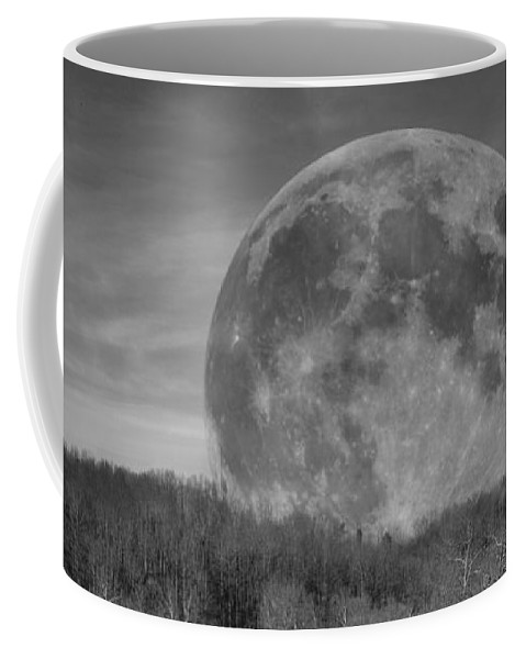 Full Coffee Mug featuring the photograph A Friend At Night by Betsy Knapp