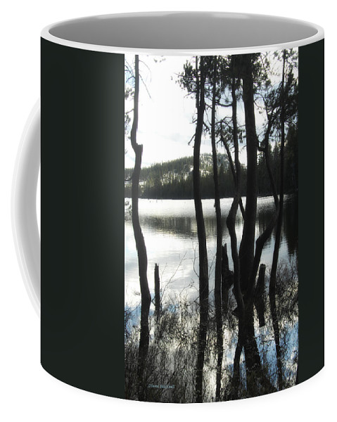 Lake Coffee Mug featuring the photograph A Little Blue by Donna Blackhall