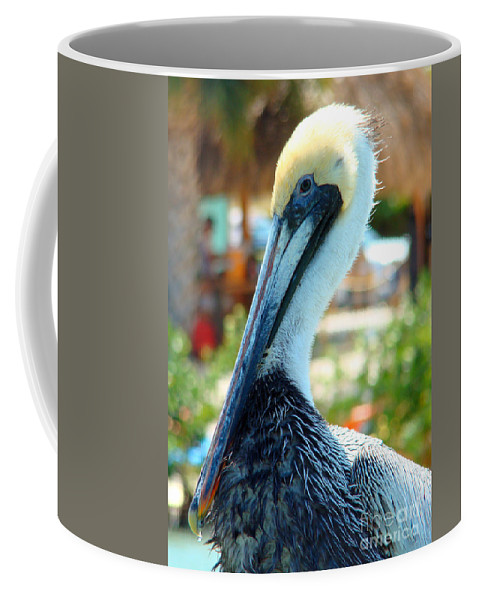 Pelican Coffee Mug featuring the photograph A Little Ruffled by Nancy L Marshall