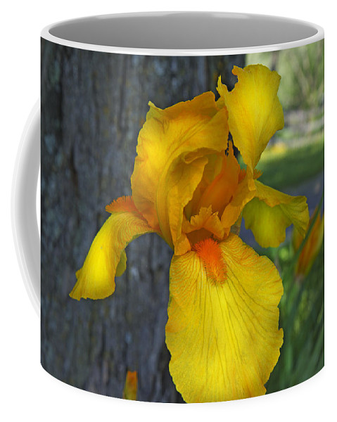 Iris Coffee Mug featuring the photograph A Lively Soul Blooms by Betsy Knapp