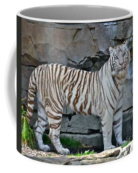 Tiger Coffee Mug featuring the photograph A Magnificent Creature by Carol Bradley
