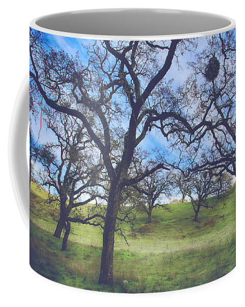Sunol Ohlone Wilderness Coffee Mug featuring the photograph A Meeting Of Men by Laurie Search