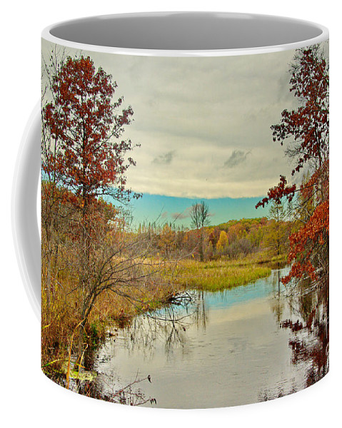Michigan Coffee Mug featuring the photograph A Michigan Moment by Gary Richards