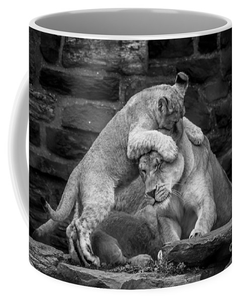 Patience Coffee Mug featuring the photograph A Mother's Patience by David Rucker