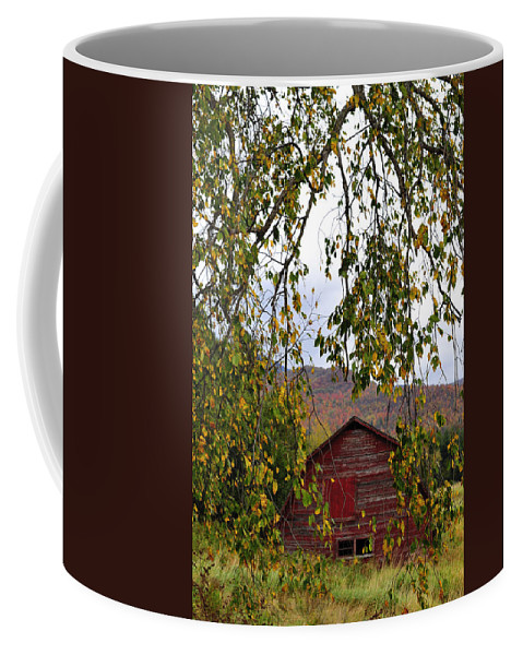 Red Barn Coffee Mug featuring the photograph A Peak Of Fall Red Barn by Terry DeLuco
