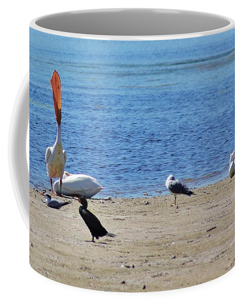 Island Coffee Mug featuring the photograph A Place To Rest by Chuck Hicks