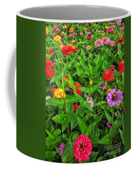Floral Coffee Mug featuring the photograph A Sea Of Zinnias 04 by Thomas Woolworth