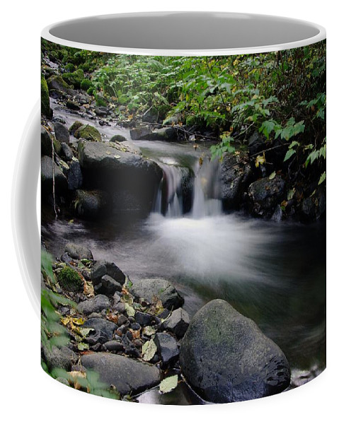 Water Coffee Mug featuring the photograph A Small Paradise by Jeff Swan