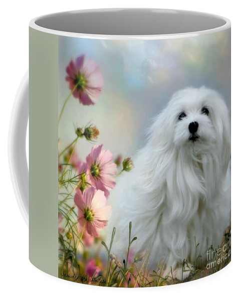 Snowdrop The Maltese Coffee Mug featuring the photograph A Soft Summer Breeze by Morag Bates
