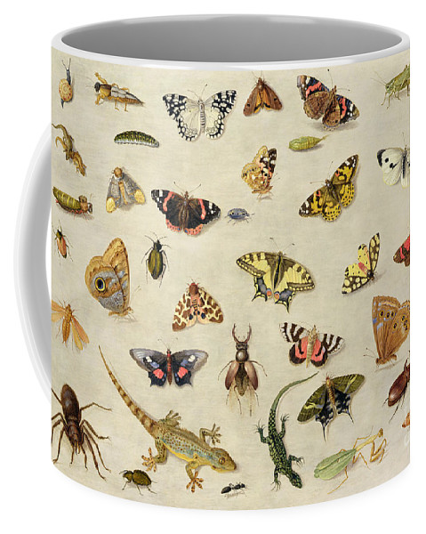 Collection Coffee Mug featuring the painting A Study Of Insects by Jan Van Kessel