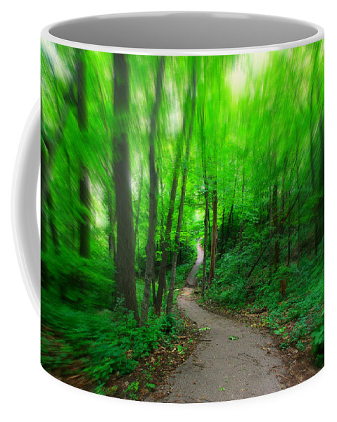Path Coffee Mug featuring the photograph A Summer Trail by Amanda Stadther