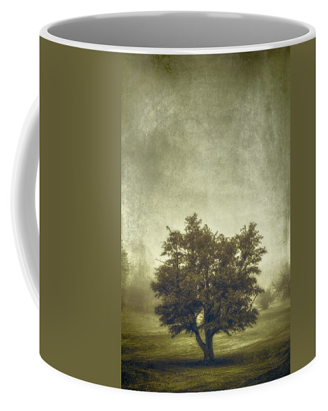 Tree Coffee Mug featuring the photograph A Tree In The Fog 2 by Scott Norris