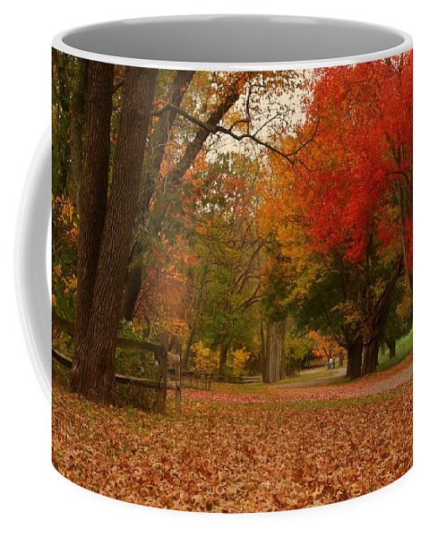 Autumn Coffee Mug featuring the photograph A Walk In Autumn - Holmdel Park by Angie Tirado