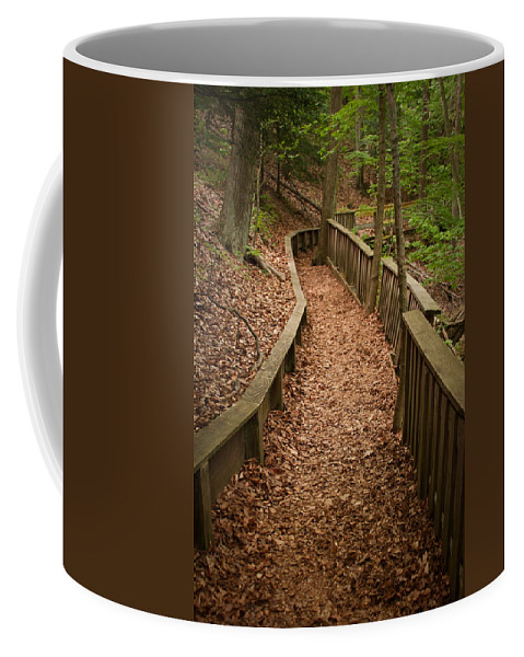 3scape Coffee Mug featuring the photograph A Walk In The Woods by Adam Romanowicz