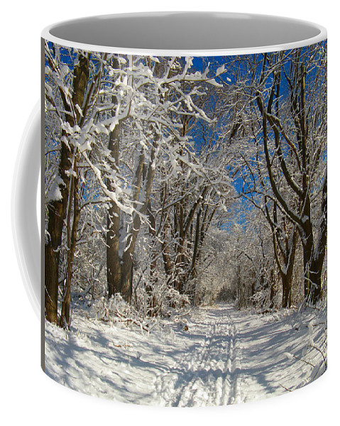 A Winter Road Coffee Mug featuring the photograph A Winter Road by Raymond Salani III