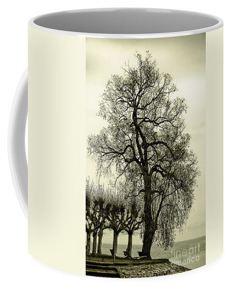 Tree Coffee Mug featuring the photograph A Winter Touch by Syed Aqueel