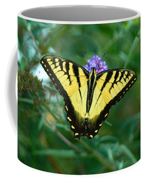 A Butterfly Coffee Mug featuring the photograph A Yellow Butterfly by Raymond Salani III