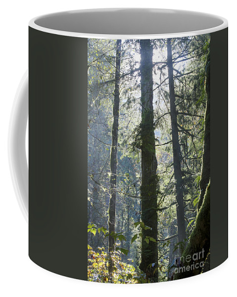 Landscape Coffee Mug featuring the photograph Above The Firs by Darleen Stry