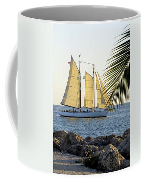 Water Coffee Mug featuring the photograph Sailing On The Adirondack In Key West by Bob Slitzan