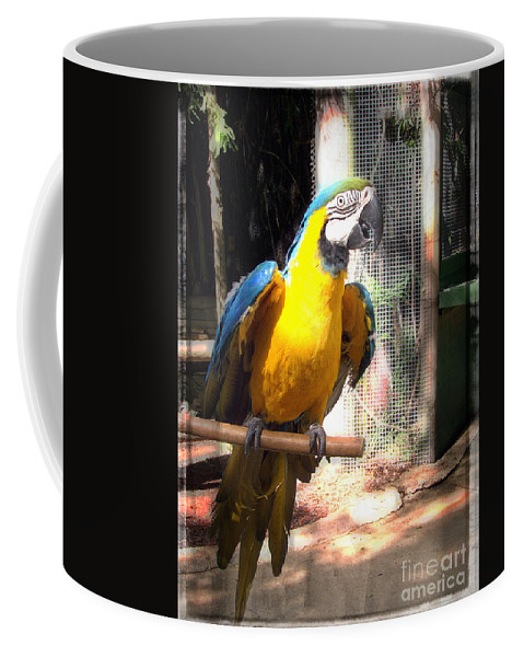 Macaw Coffee Mug featuring the photograph Adopted Macaw - Rescued Parrot by Ella Kaye Dickey