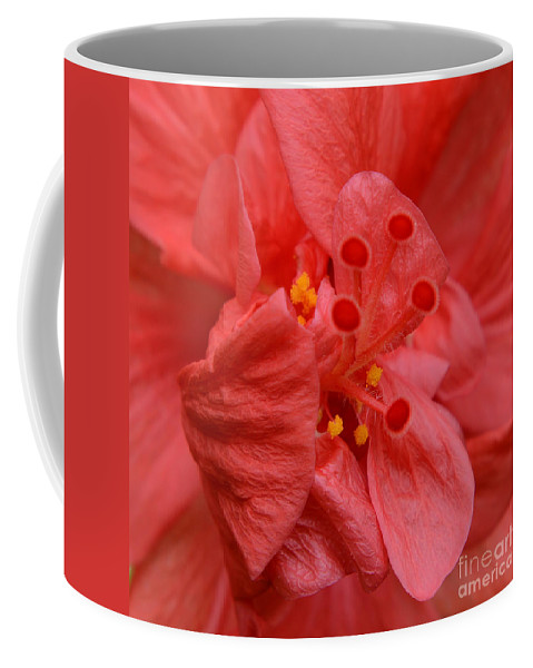Red Hibiscus Coffee Mug featuring the photograph Red Hibiscus by Olga Hamilton