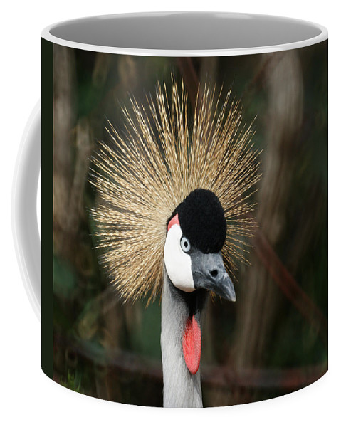 African Crowned Crane Coffee Mug featuring the photograph African Crowned Crane 1 by Ernie Echols